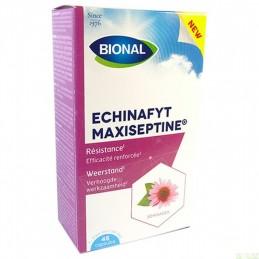 Echinafyt Maxiseptine...