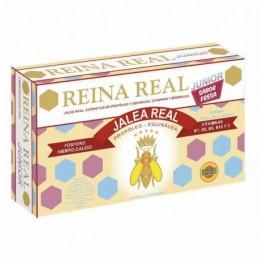 ROBIS REINA REAL INFANTIL...